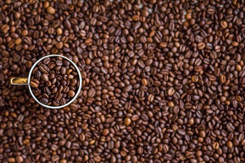 Kaffee, für viele geht es nicht ohne. Aber ist Kaffee gesund oder ungesund? Hilft er beim Abnehmen oder hemmt Kaffee die Abnahme?