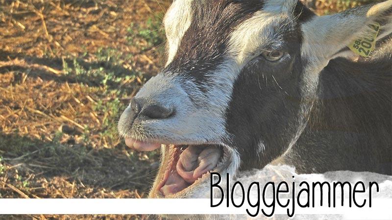 Blogger, hört endlich auf zu jammern. Das will keiner lesen. Handelt stattdessen, dann habt ihr auch keinen Grund zu jammern.