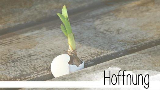 Die Hoffnung bleibt. Immer. Solange einer hofft, bleibt ein Hoffnungsschimmer. - eine Kurzgeschichte