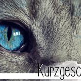 Eine Kurzgeschichte über graue Katzen. Oder doch eher über Zwangsstörungen?