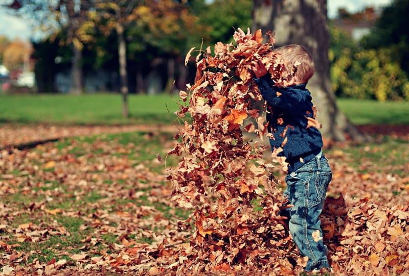 Herbst vereint Poesie, Gemütlichkeit, Kindheit und Schönheit und ist damit die beste aller Jahreszeiten. Warum genau erfährst du hier.