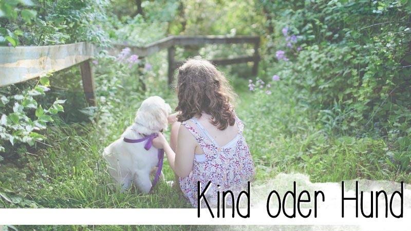 Kind oder Hund? Manchmal gar nicht so einfach zu unterscheiden. Zumindest am Anfang sind die Unterschiede verschwindend gering. - Ein Rätsel zum Mitraten.