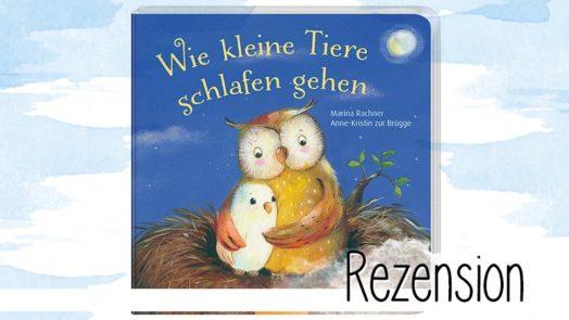 """""""Wie kleine Tiere schlafen gehen"""" ist ein süßes und wunderschönes Pappbilderbuch ab 18 Monaten aus dem Oetinger Verlag. Perfekt für das tägliche Einschlafritual."""