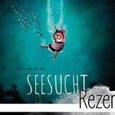 """""""Seesucht"""" von Marlies van der Wel ist ein Bilderbuch für Kinder ab 3 Jahren und gleichzeitig ein Mahnmal für den Schutz der Meere für Erwachsene."""
